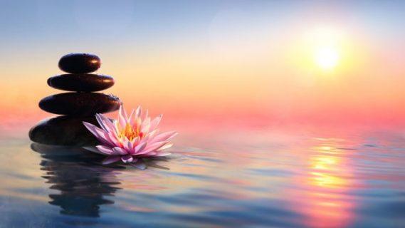 Online Mindfulness Meditation: 6-Week Program