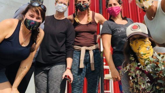 Spring Yoga, Farm Tour, Education & Organic Lunch at Cattails Farm - Mask Optional